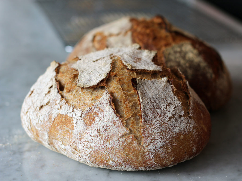 sour dough at eliot and vine-elito and vine food-how to bake sour dough 00